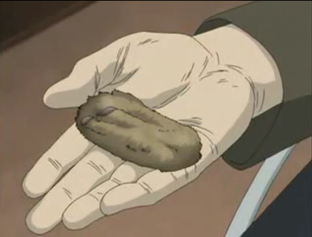 File:Rabbit's foot.png