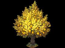 File:Golden olive tree.png