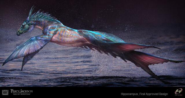 File:Hippocampus - Sebastian Meyer-29.jpg