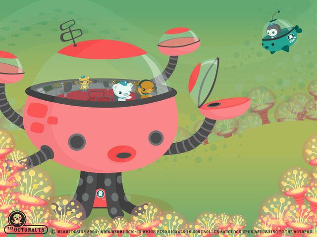 File:Octopod meomi.jpg