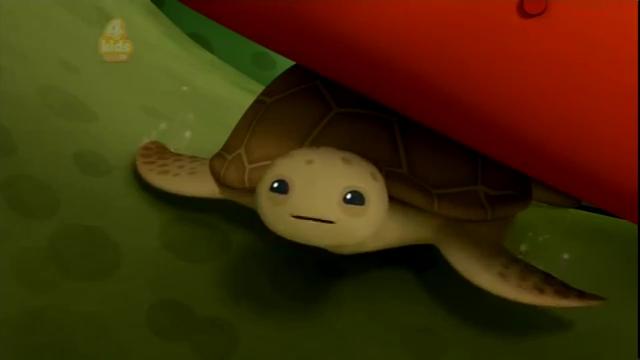 File:Loggerhead Sea Turtle Season 3 New Episode.mp4 000365320.jpg