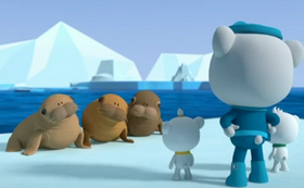 The Walrus Pups