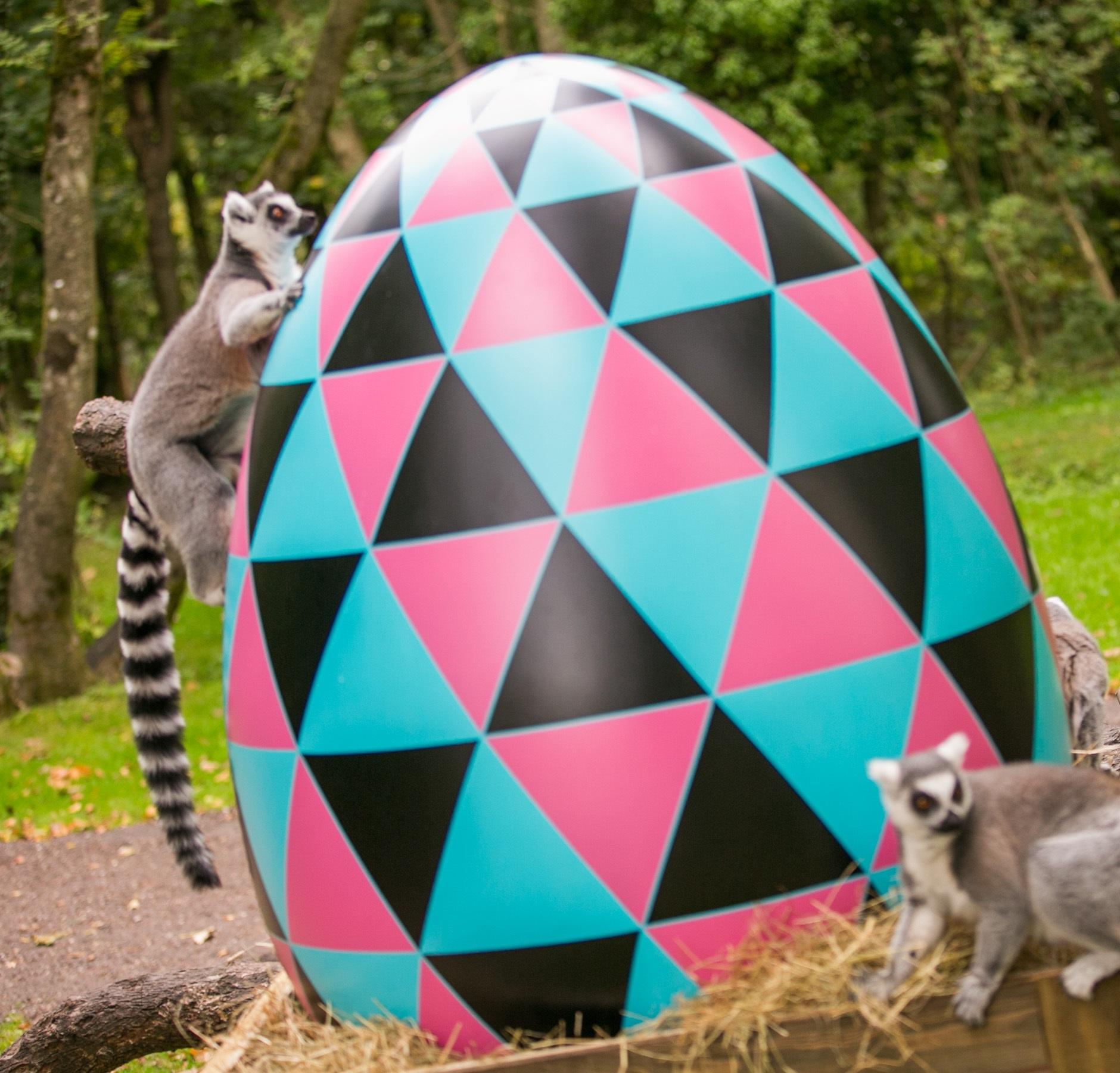 File:Egg.jpeg