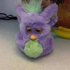 2005 Funky Furby (Purple/Green).