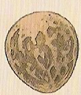 File:Amphithere Dragon Egg.png