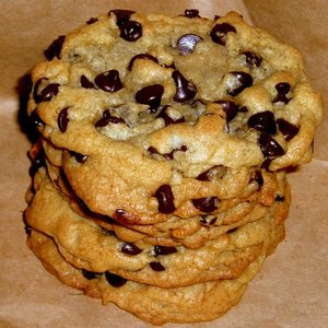 File:User Flapjack18 Chocolate chip.jpg