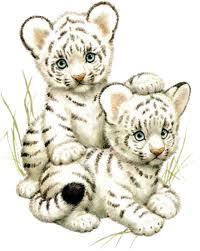 File:Snow tiger cub drawing.jpg