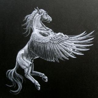 File:Pegasusvp4.jpg