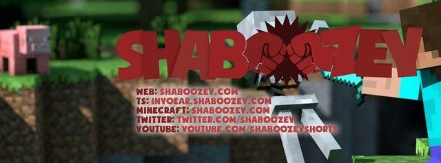 File:ShaboozeyInformation.jpg