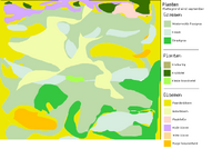 Plattegrondje eind september -gras+planten.png