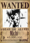 Michi Wanted Poster