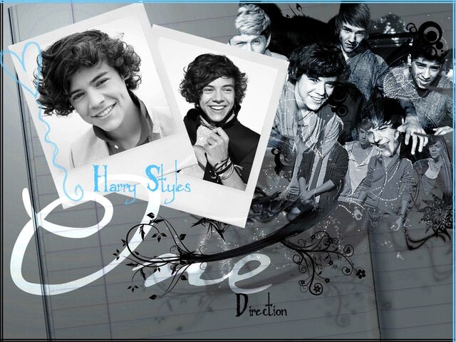 File:1D-3-one-direction-28534926-900-675.jpg