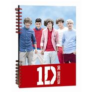 Old 1D claire's notepad