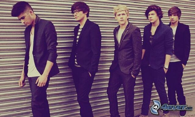 File:-pictures.4ever.eu- one direction, louis tomlinson, liam payne, niall horan, harry styles, zayn malik 153301.jpg