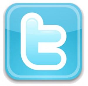 File:Twitter-Logo-300x293.jpg