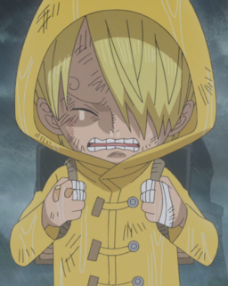 File:Sanji's Raincoat.png