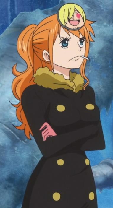 Image - Sanji in Nami's Body.png | One Piece Wiki | FANDOM ...