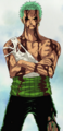 Zoro After Taking Luffy's Pain