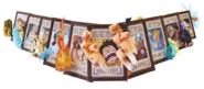 One Piece Frame Collection The Power Of Devil Fruit Aligned