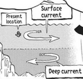 Surface and Deep Currents.png