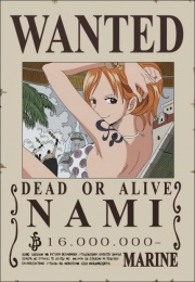 File:Nami's Wanted Poster.png