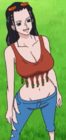 Robin Episode of Luffy