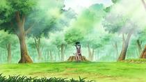 Robin Reading Alone