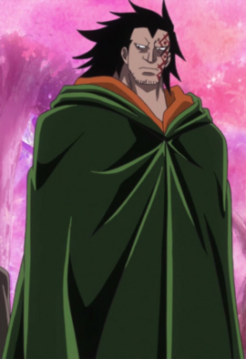 Monkey D. Dragon en el anime
