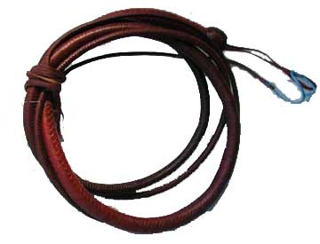 File:Alix's whip.jpg