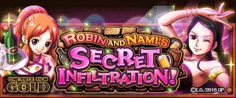 Robin and Nami's Secret Infiltration Banner