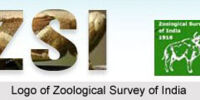 Zoological Survey of India (Indian Museum), Calcutta