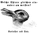 Rabbit–Duck Illusion