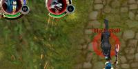 Mage combat guide