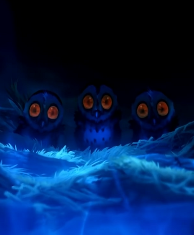 File:Owlets.png