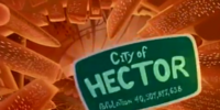 City of Hector