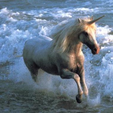 File:UnicornCanonsTaken.png