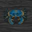 File:Wandering crab.png