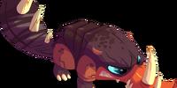 Rhinoplatyx