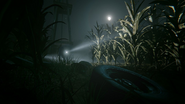 The Cornfield Chase