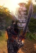 Sword of Life Stealing