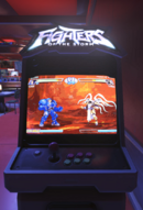 Arcadegame fightersofthestorm