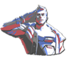 Soldier 76 Spray - Salute