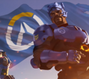 Overwatch (Organisation)