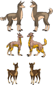 Evolution of the pacos by mf99k