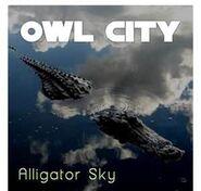 Alligator Sky