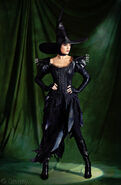 Disney wicked witch west costume