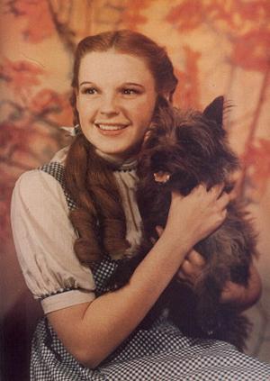 File:Dorothytoto.jpg