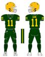 Packers alternate uniform