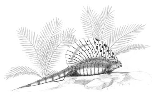 File:Edaphosaurus-cruciger jconway.jpg