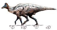 Corytosaurus